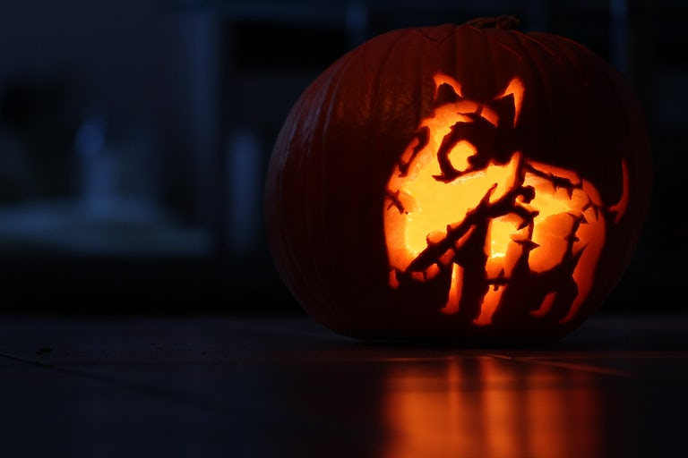 pumpkin with dog carved into it