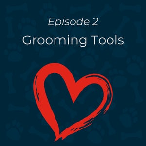 Dog Grooming Tools Essentials