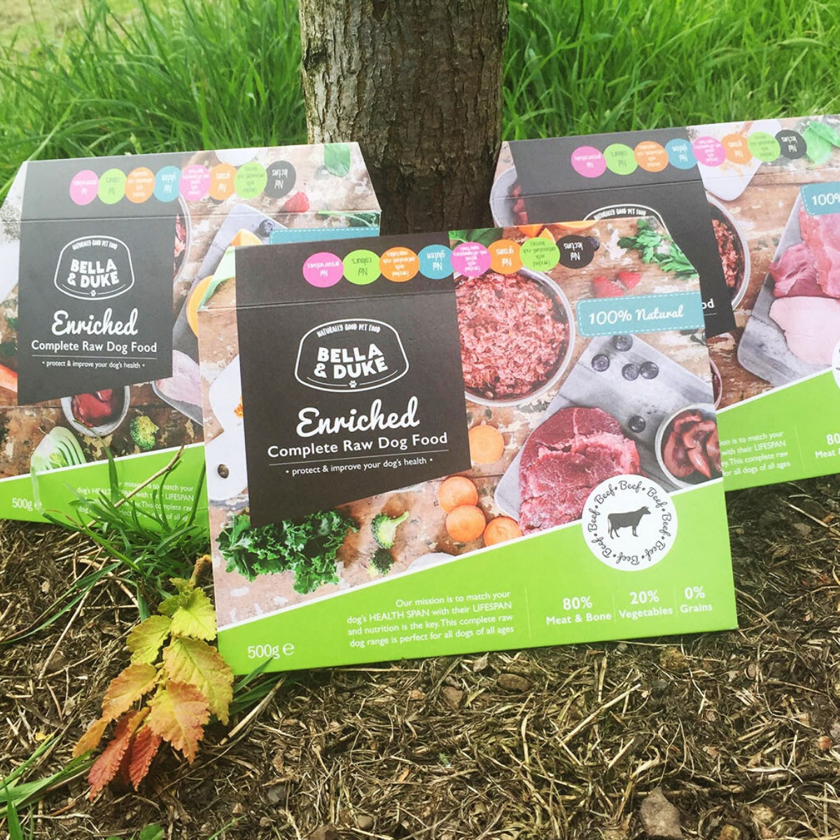 Enriched paper packaging