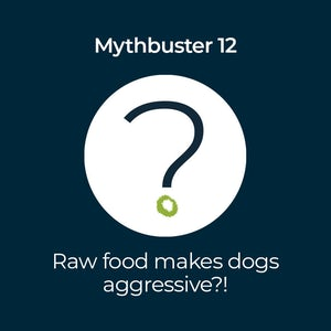 Podcast-90-raw makes dogs aggressive