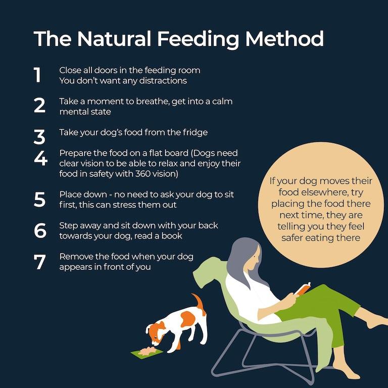 Caroline's Dog not eating natural feeidng method