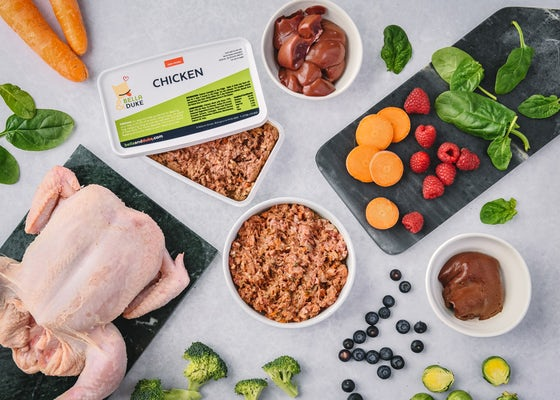 Chicken complete raw dog food meal